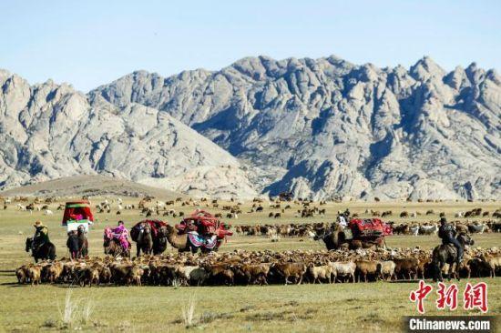 草原盛会!秋季转场时节新疆福海草原再现原生态牧归盛况